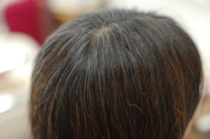 奈良県奈良市|白髪ぞめ、ヘナ、手選別ヘナ